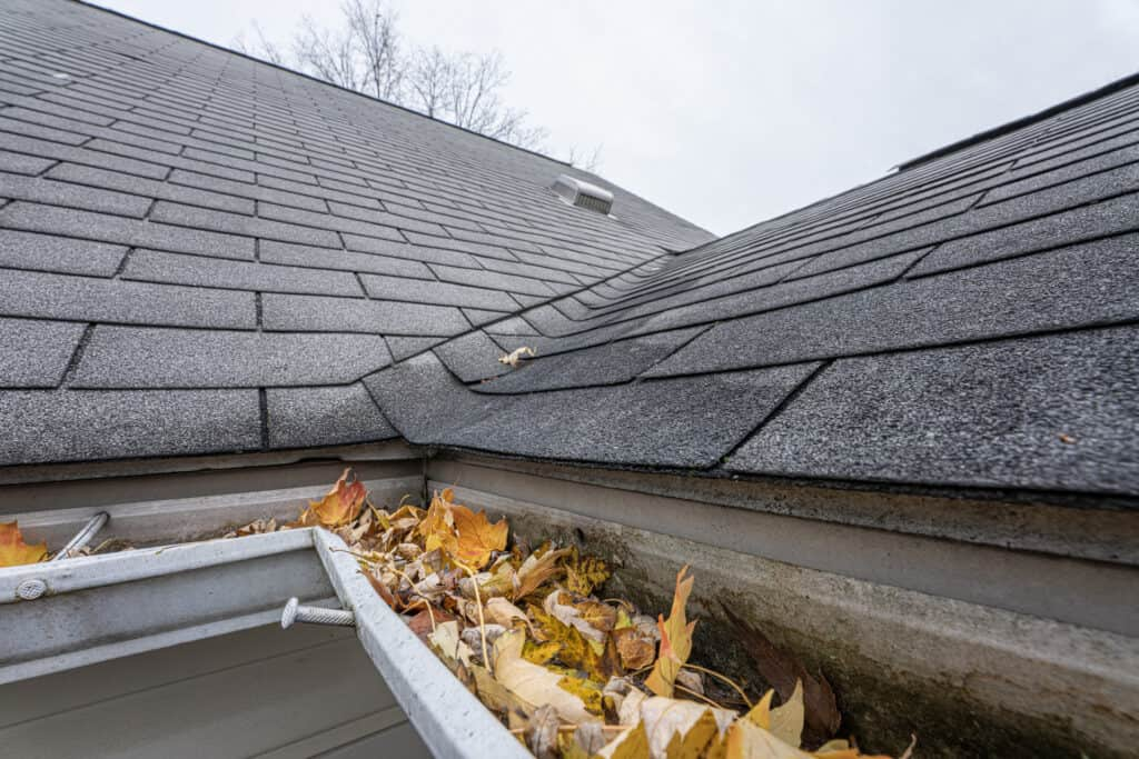 gutter blocked with leaves and debris