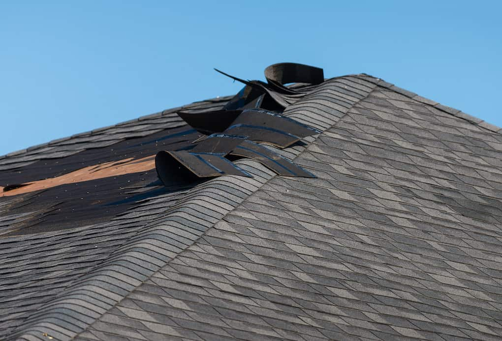 check roof shingles as a part of roof maintenance