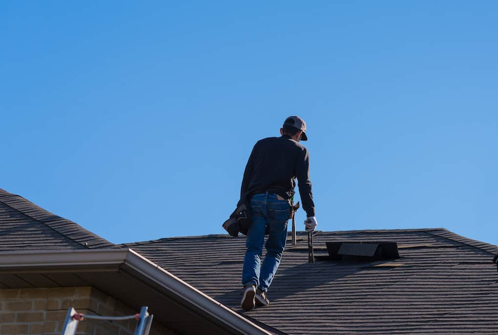 a professional roof inspection is the first step of roof maintenance
